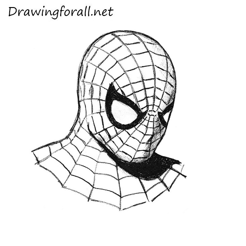 Man S Face Line Drawing : How to draw spider man s head drawingforall