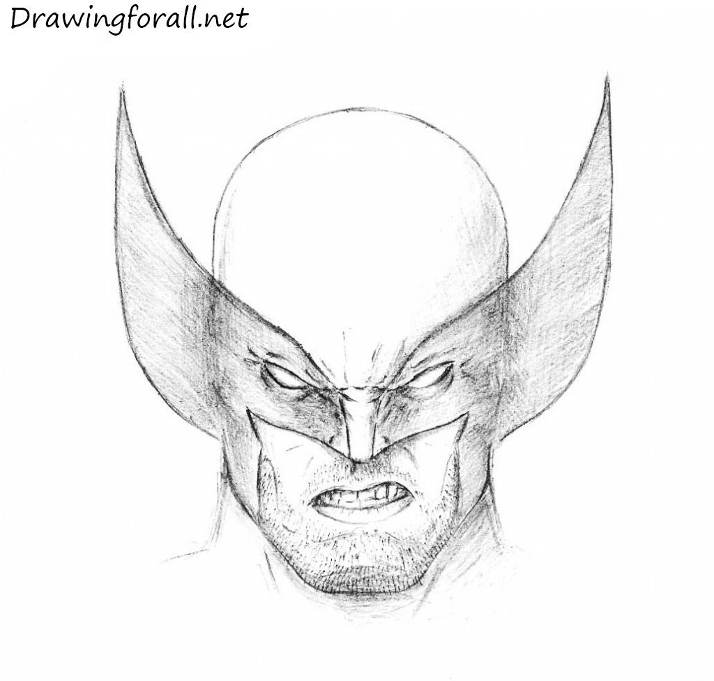 Scribble In Drawing : How to draw wolverine s head drawingforall