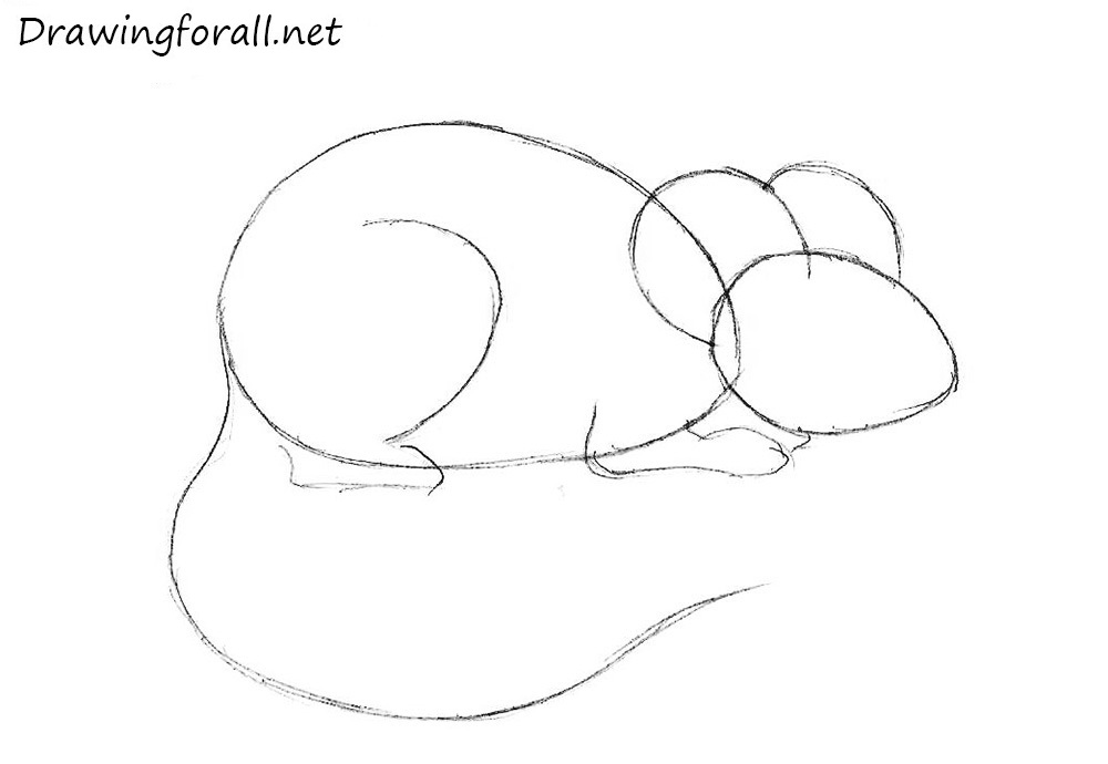 How to draw a mouse for beginners for How to draw with a mouse