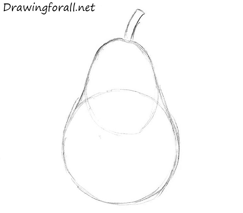 how to draw a pear for a beginner artist