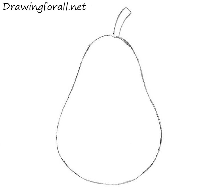 how to draw a pear for beginners step by step