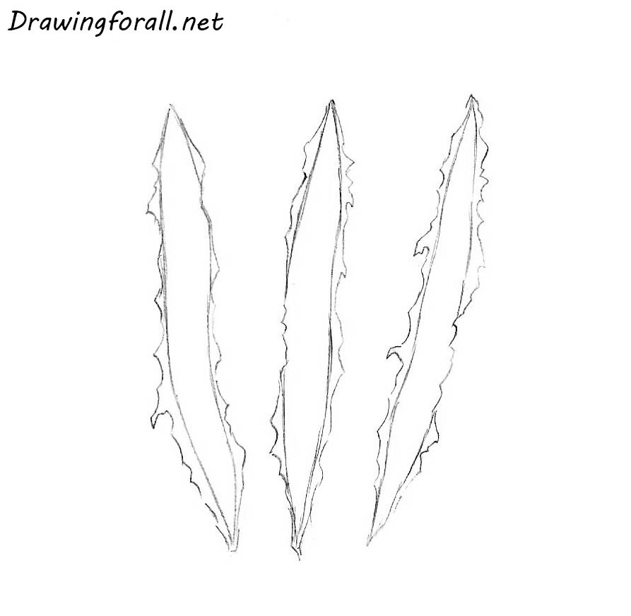 how to draw wolverine clawmarks step by step