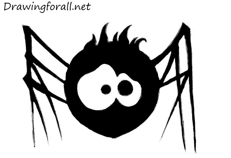 drawing spider for kids