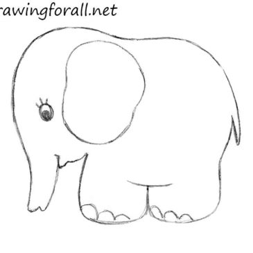 How To Draw An Elephant for Kids