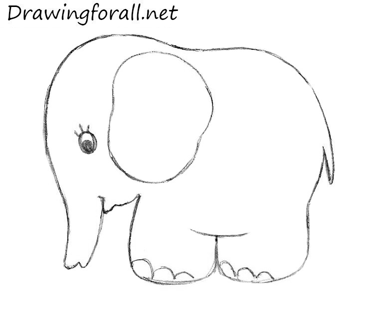 how to draw an enephant for kids