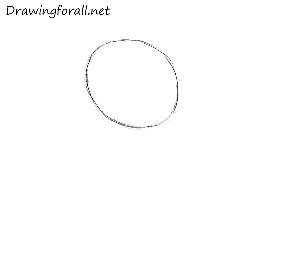 Drawing Smooth Lines Reviews : How to draw a rabbit for kids drawingforall