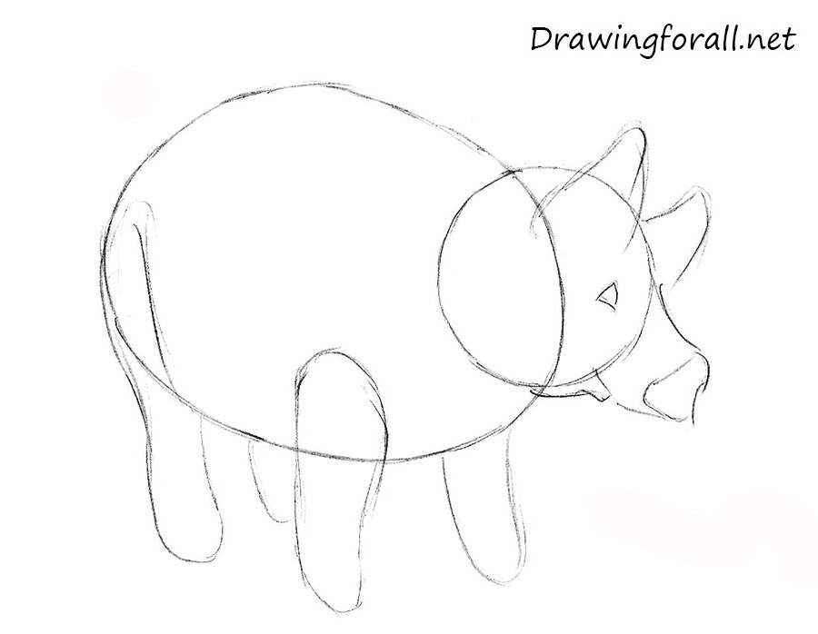how to draw a pig for beginners