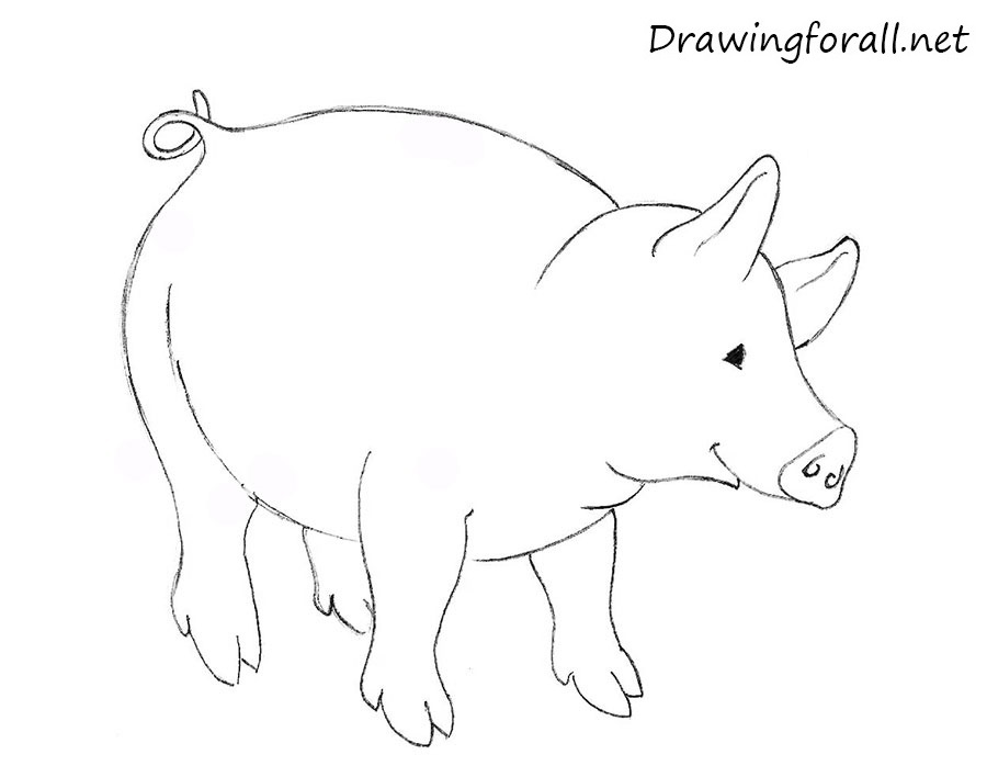 How to draw a pig for children