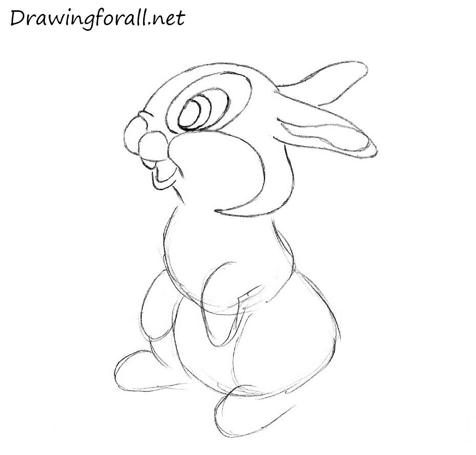 how to draw a rabbit for beginners