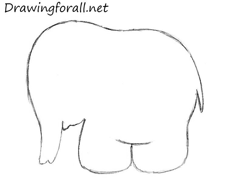 How to draw an enephant step by step