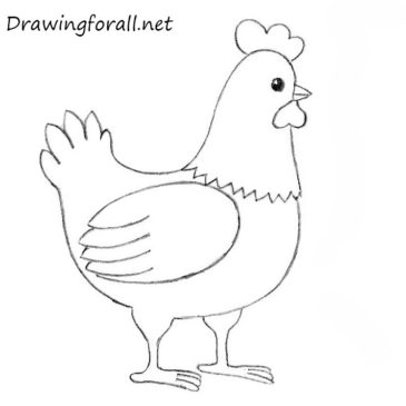 How to Draw a Chicken for Kids