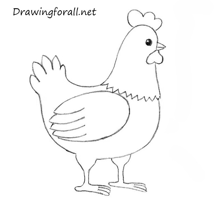 how to draw a chickern for kids