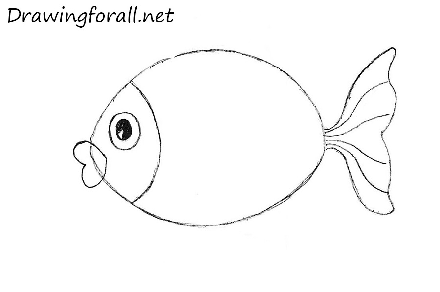 how to draw a fish for children