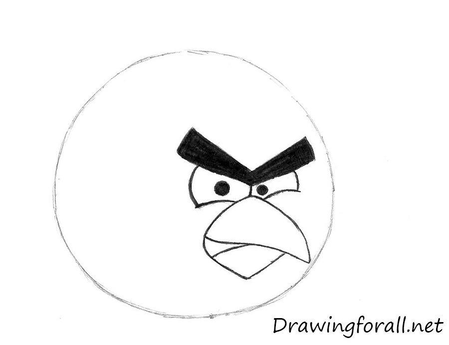 How to Draw Angry Birds | DrawingForAll.net