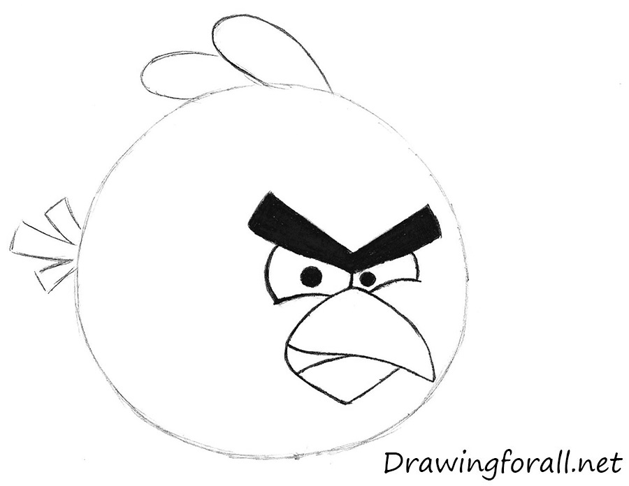 drawing angry birds