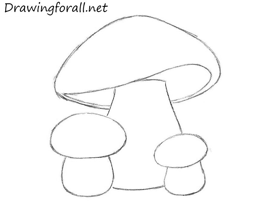how to draw mushrooms for beginners