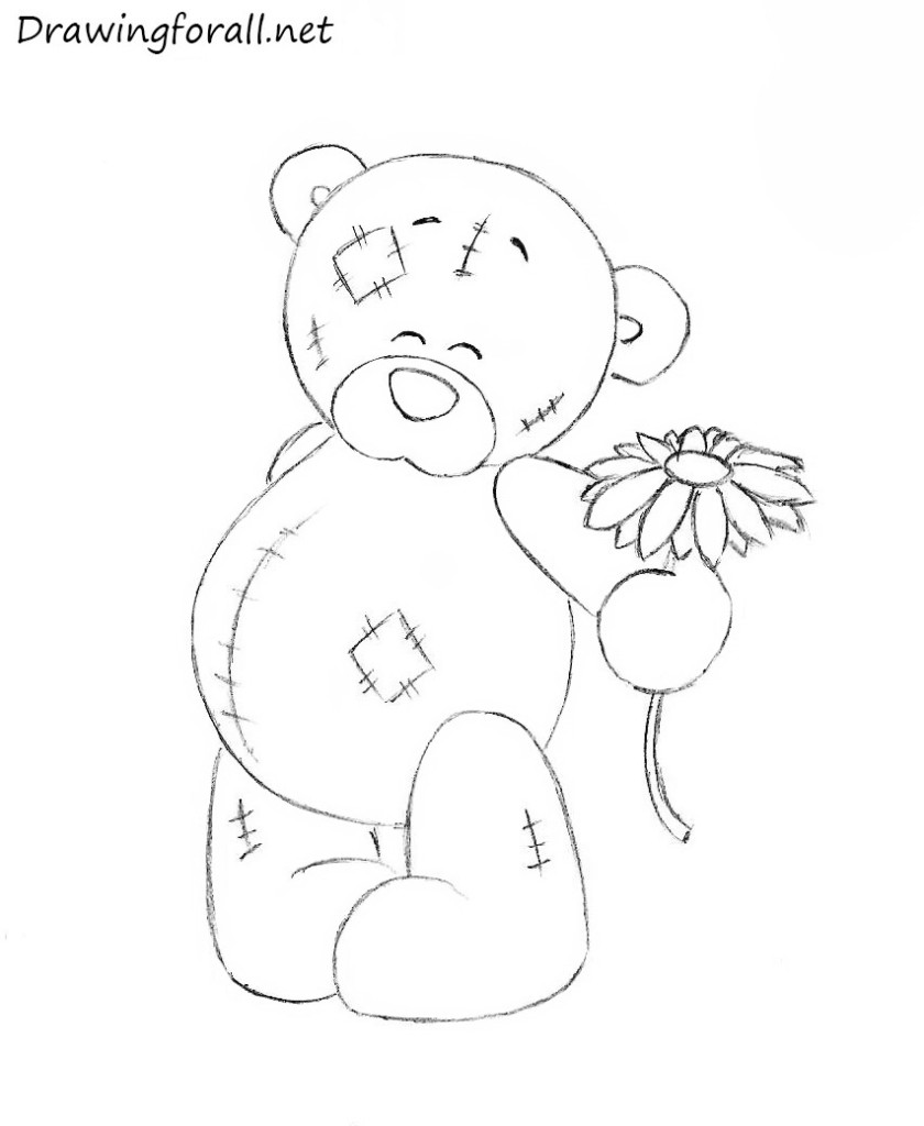 teddy bear drawing