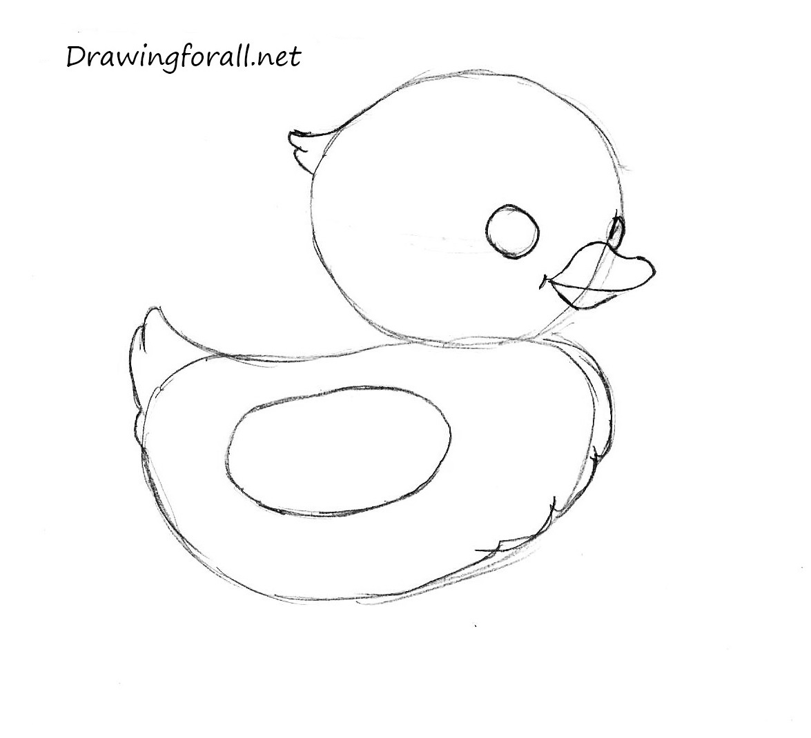 uncategorized how to draw a chicken step by step how to draw a chicken drawingforall net