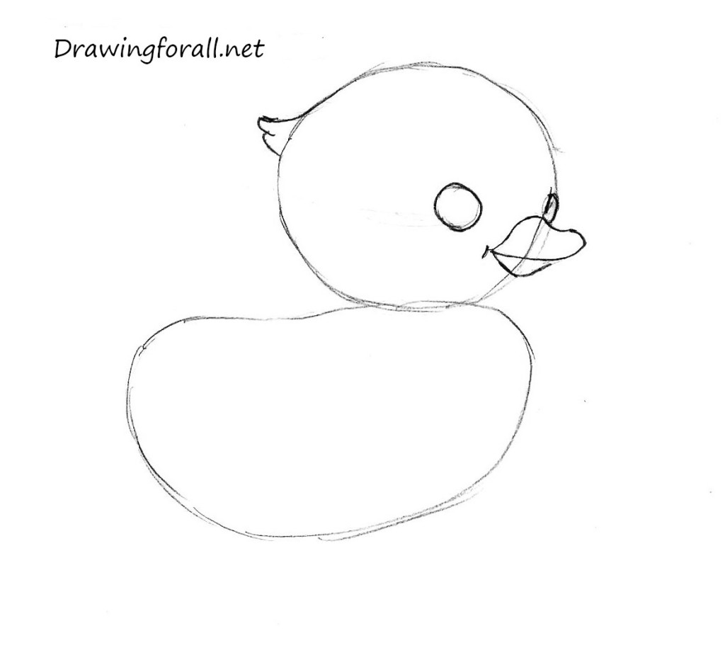 how_to_draw_a_chicken_by_pencil