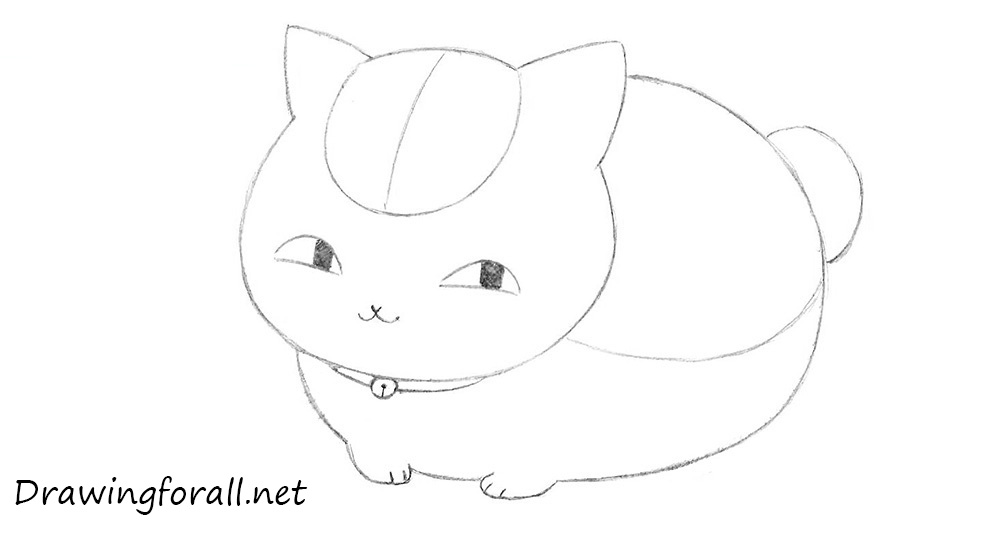 how to draw anime cat