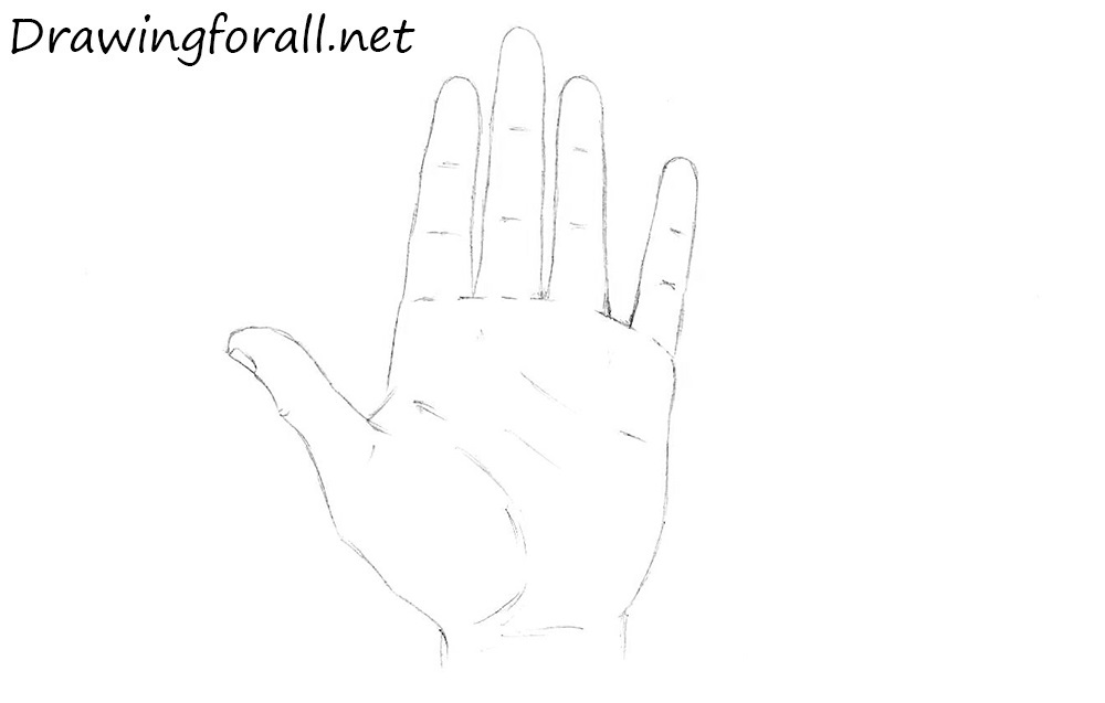 how to draw a palm