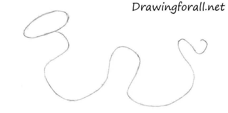 how to draw a cartoon snake