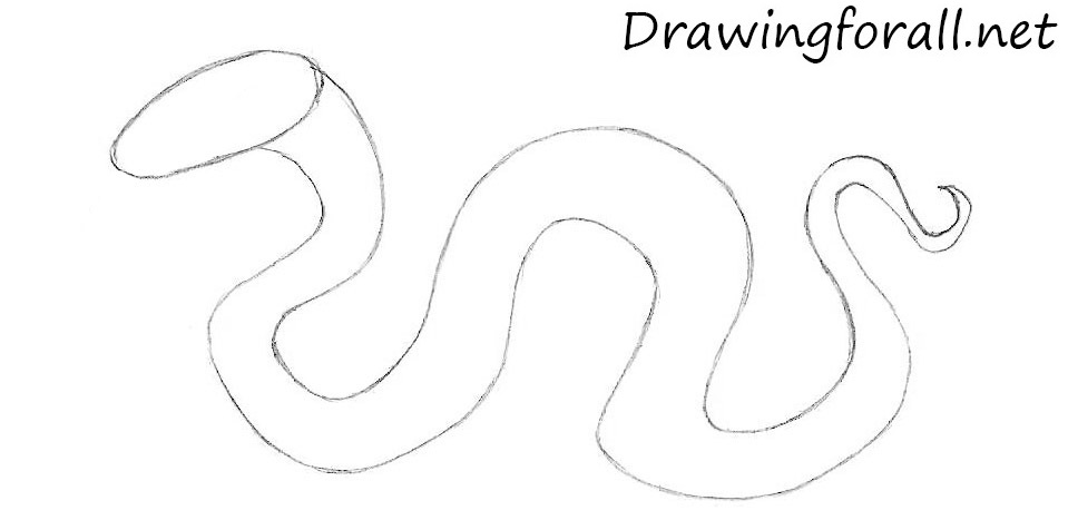 how to draw a cartoon snake step by step