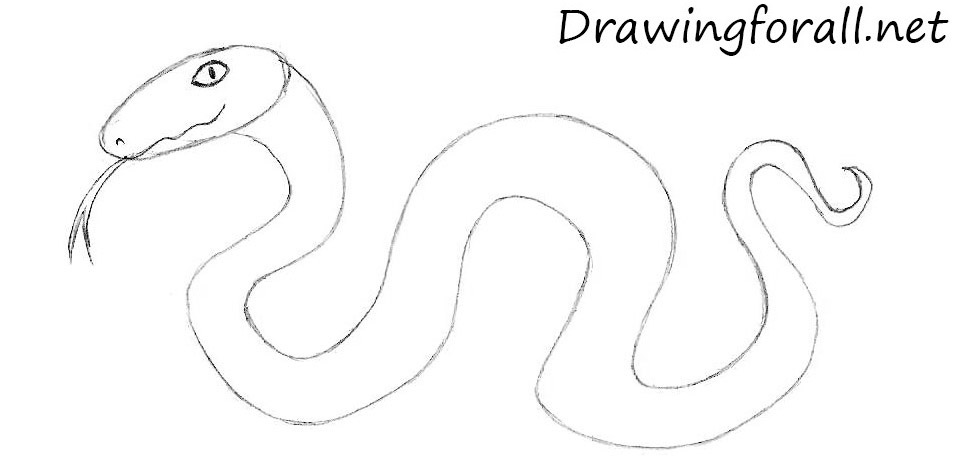 how to draw a cartoon snake for kids