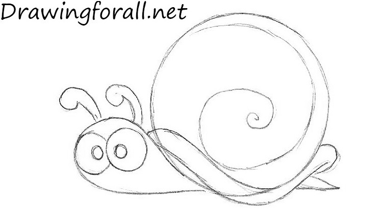 How to Draw a Snail cartoon