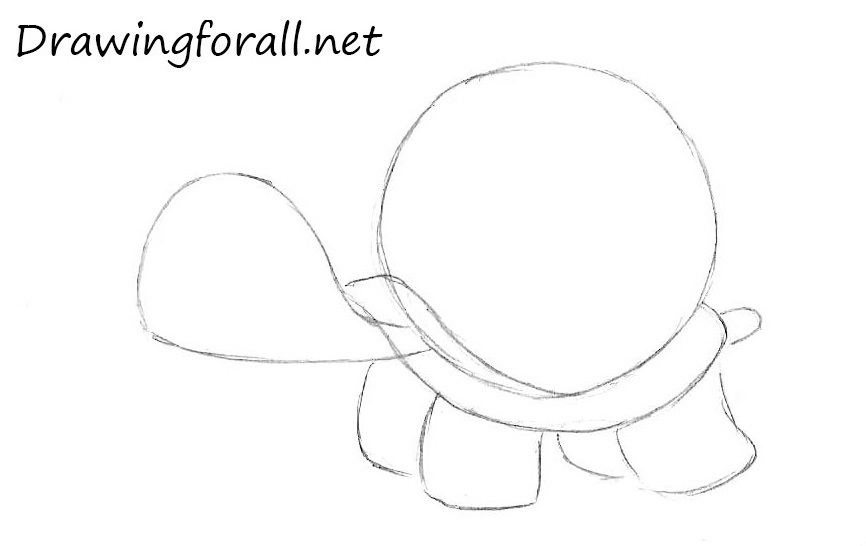 How to Draw a Turtle for children