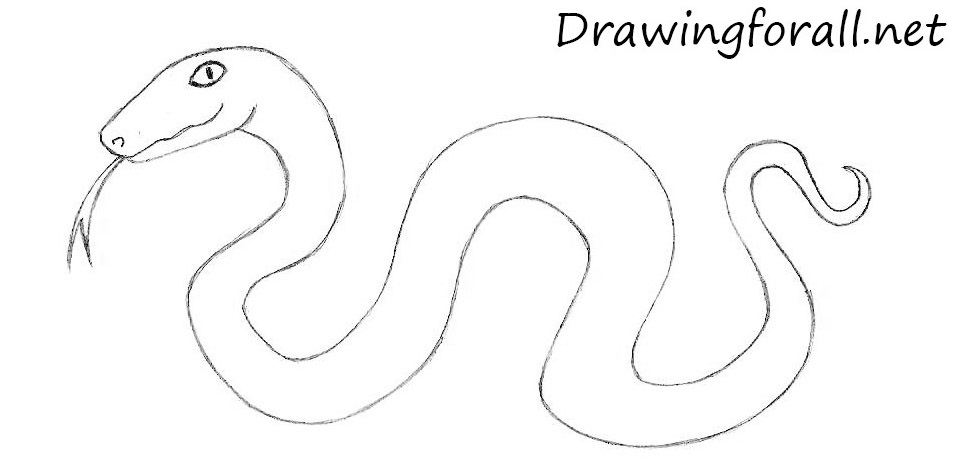 how to draw a cartoon snake with a pencil