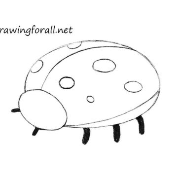 How to Draw a Ladybug for Kids