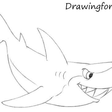 How to Draw a Cartoon Shark