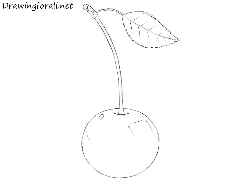 how to draw a cherry with a pencil