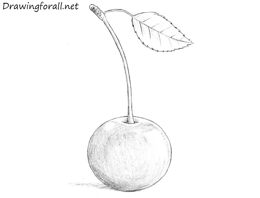 how to draw a cherry