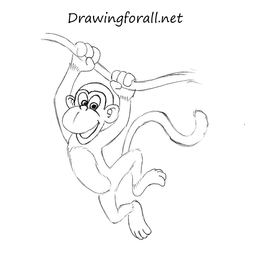 How To Draw A Monkey For Kids | DrawingForAll.net