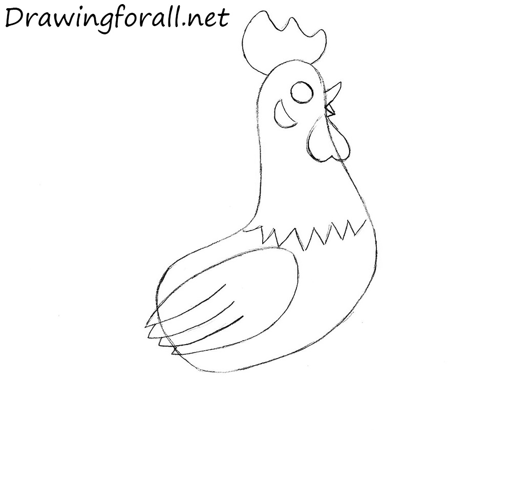 how to draw a cock for beginners