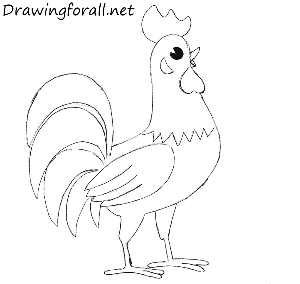 How to draw a rooster for beginners drawingforall how to draw a cock kids thecheapjerseys Image collections