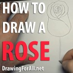 How To Draw a Rose Videotutorial