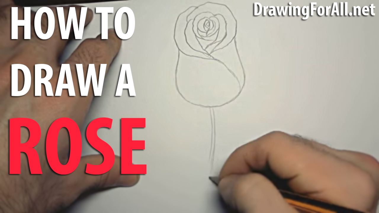 How To Draw A Rose Videotutorial Drawingforall How To Draw A Rose How To  Draw A