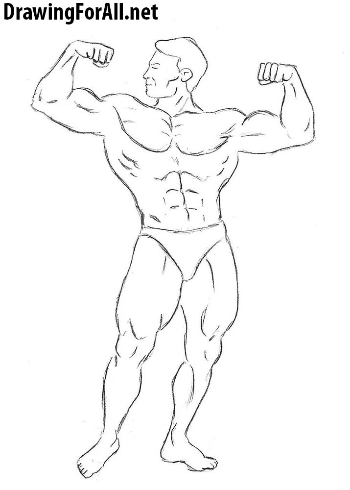 How to draw a bodybuilder for beginners