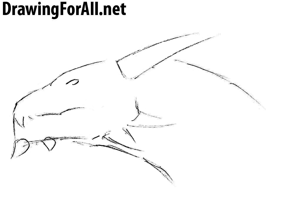 2 learn how to draw a dragon head