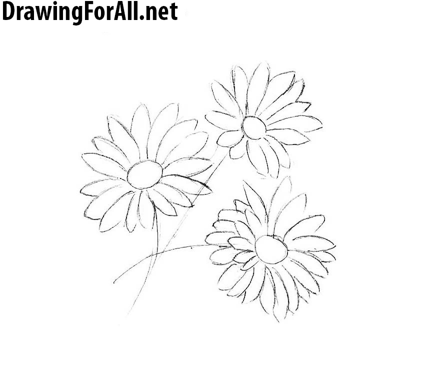 learn drawing flowers