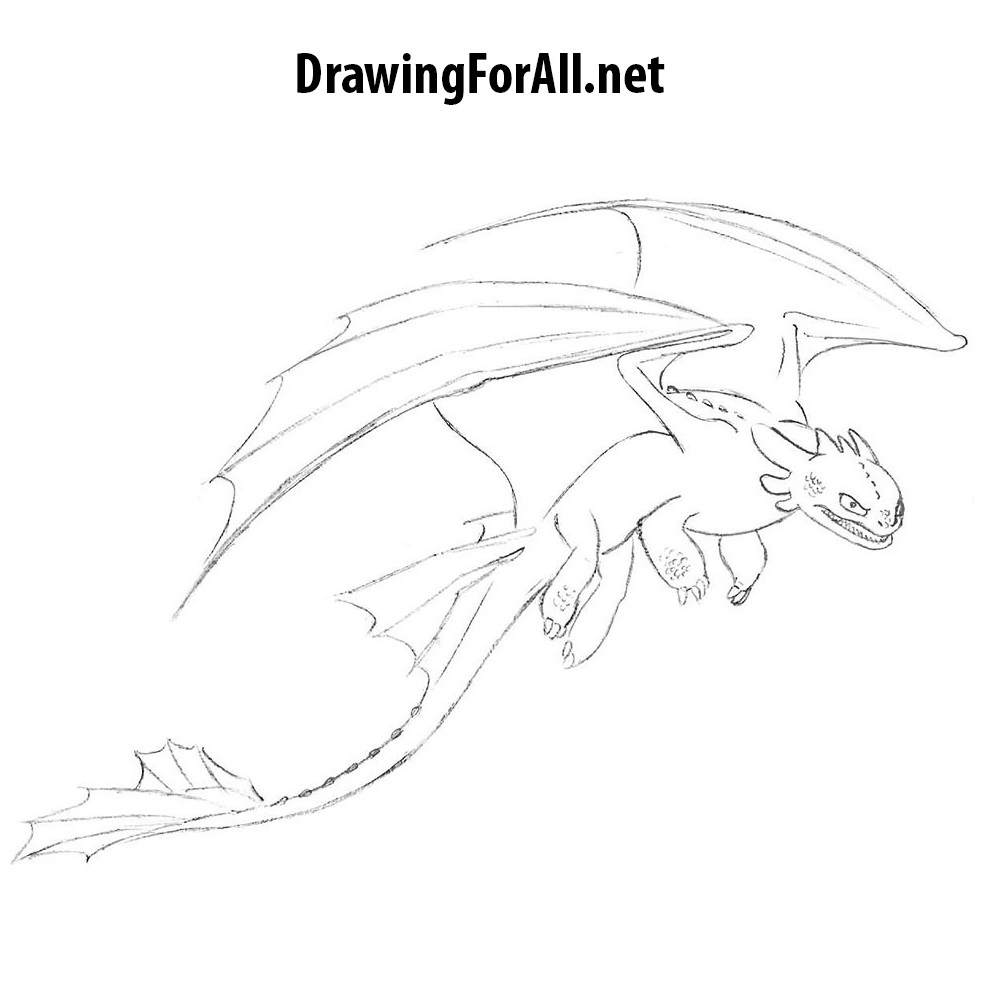 How to draw Toothless 27