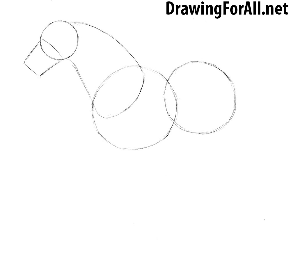 learn How to Draw a Horse