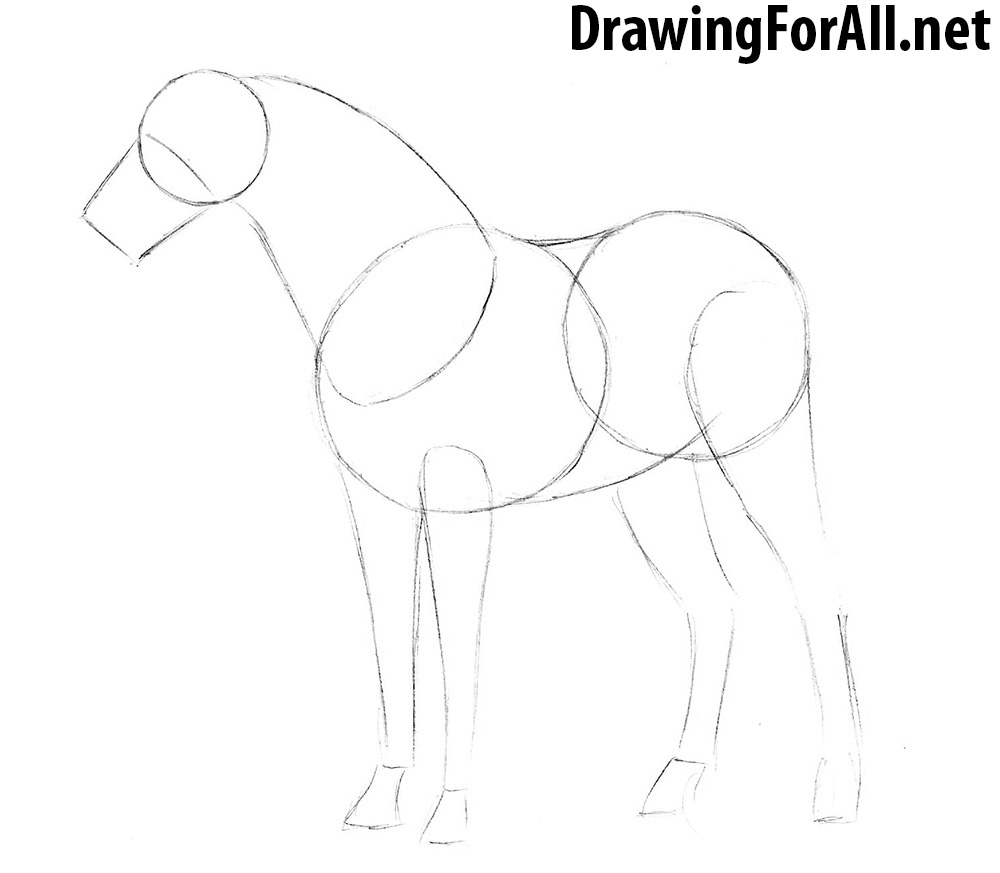 How to Draw a Horse with a pencil