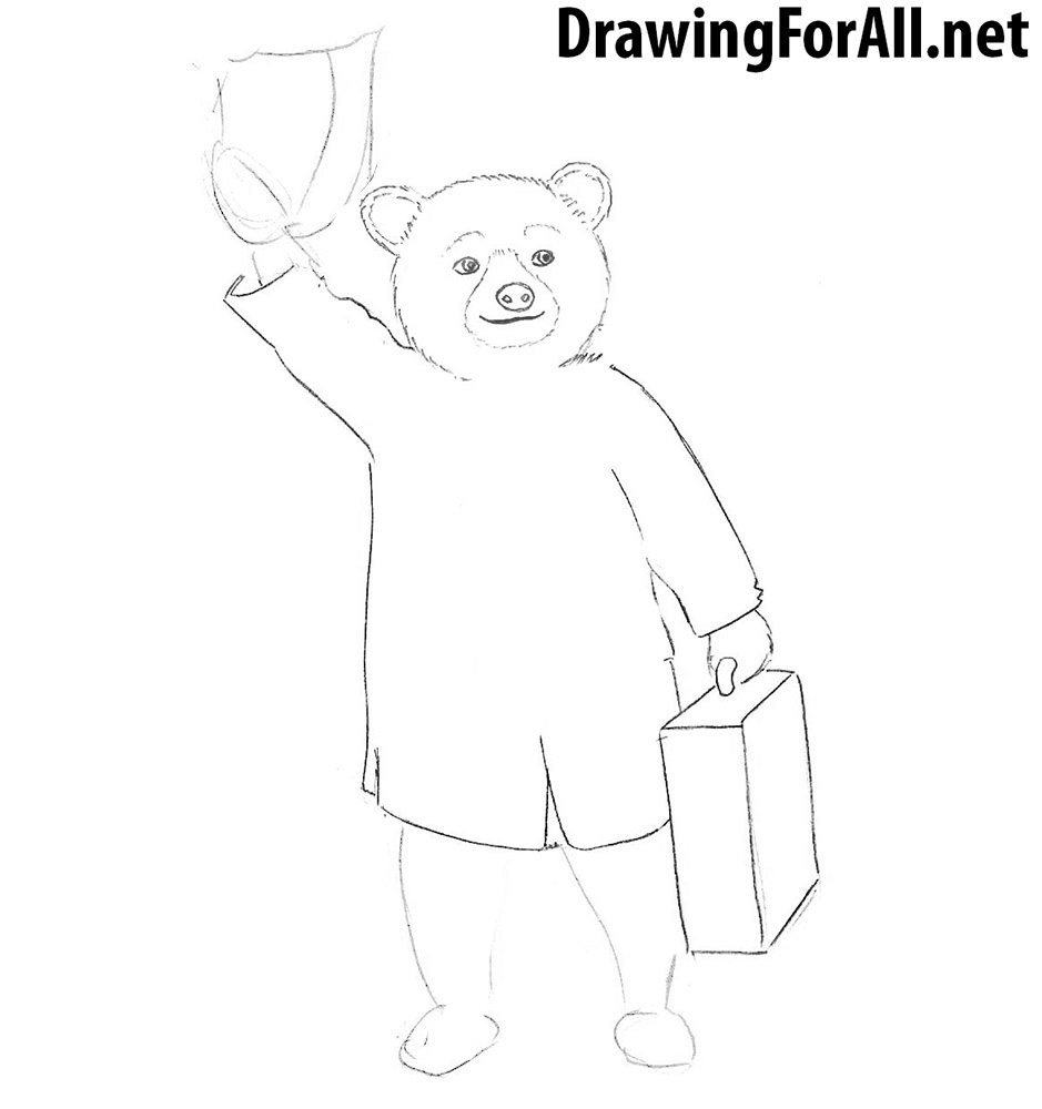 learn How to draw Paddington Bear