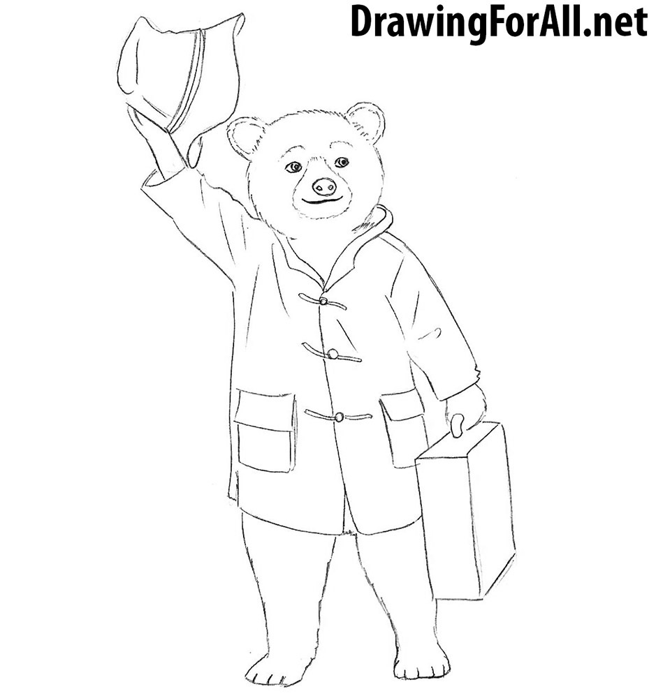 How to draw Paddington Bear
