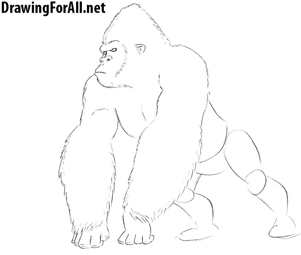 Uncategorized How To Draw A Gorilla Step By Step how to draw king kong drawingforall net a gorilla