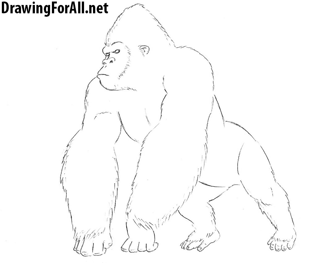 king kong drawing